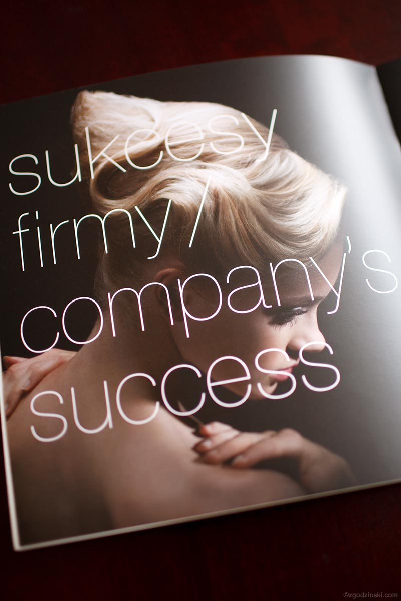 publications/30-company-success.jpg